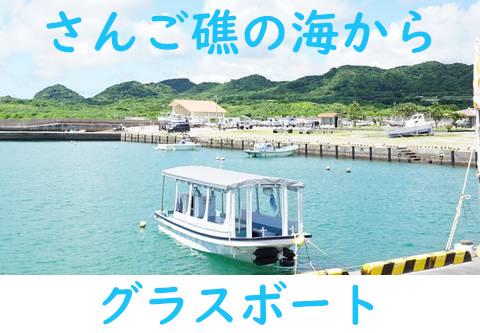 石垣島グラスボート!北部エリアでグラスボート体験ツアー
