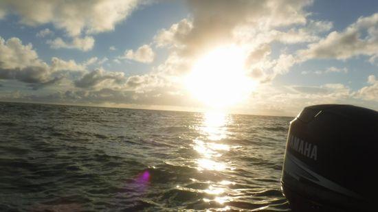 朝日が登場!水中は、一気にクライマックスです。
