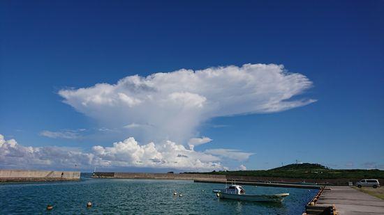 夏雲ですね