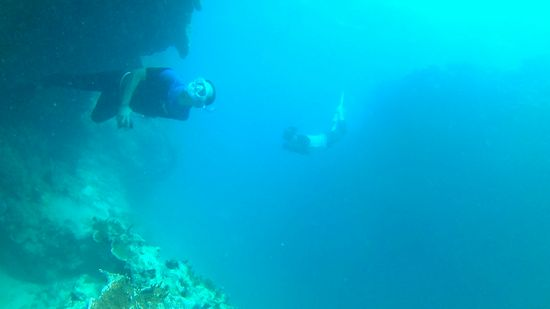 断崖絶壁の奥にはイセエビ