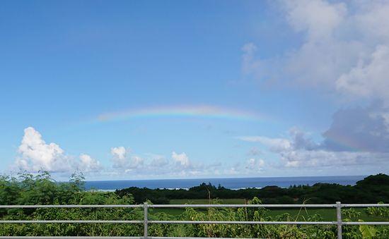 晴れた青空に虹