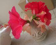 ハイビスカスは、まだまだいっぱい咲いています。