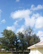 台風後の快晴!日焼け日和でした