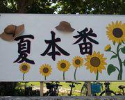 これが石垣島の夏本番です!小学校の看板から
