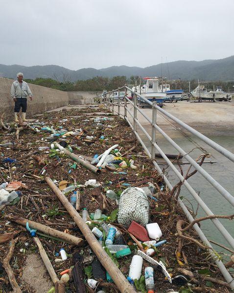 台風のお土産。今回は驚異的です。