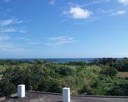 屋上からの眺め。海が見えます。