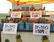 パイナップルの無人販売