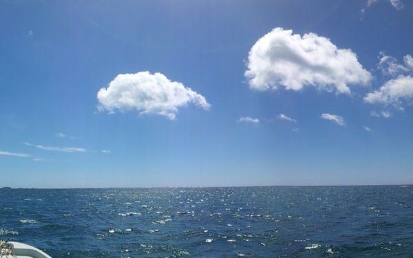夏本番!快晴のお天気です。