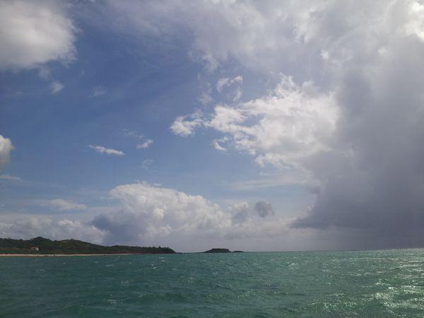 晴れたり曇ったり。午後から雨