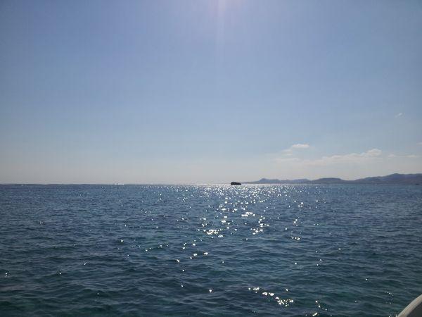 海がキラキラしています。快晴のお天気です
