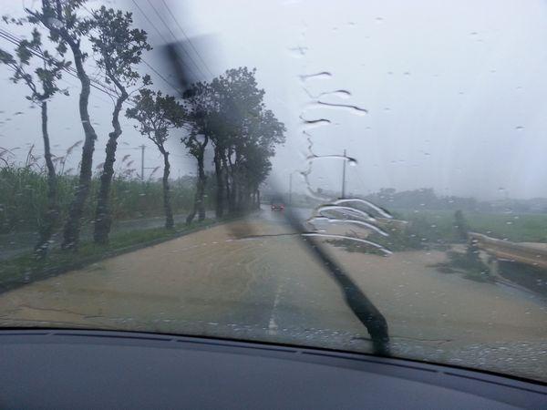 折れた木が流されて道路に。