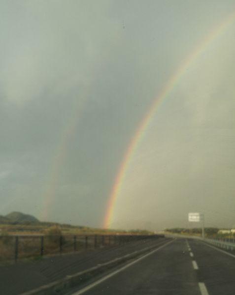虹がでていました。曇りの日も悪いことばっかりじゃないですね