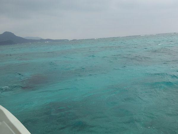曇り模様の本日、波も高めです。