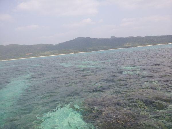 本日も快晴!絶好調の石垣島です。