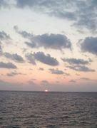 早朝は曇り模様。でもすぐに晴れてくる日が続いています。