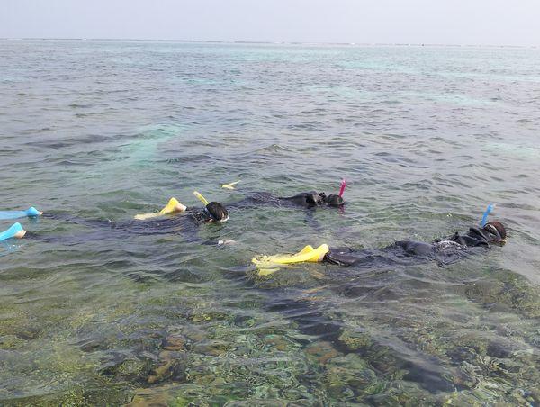干潮時間、とっても浅くサンゴがすぐ目の前です