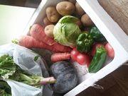 野菜をたくさん頂戴します。