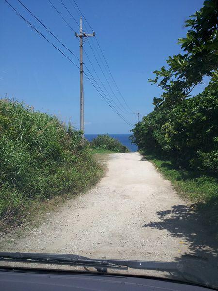 海を目指して舗装されていない道を進むこと500mくらい