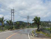 スプリンクラーの水が道路にはみ出ています。