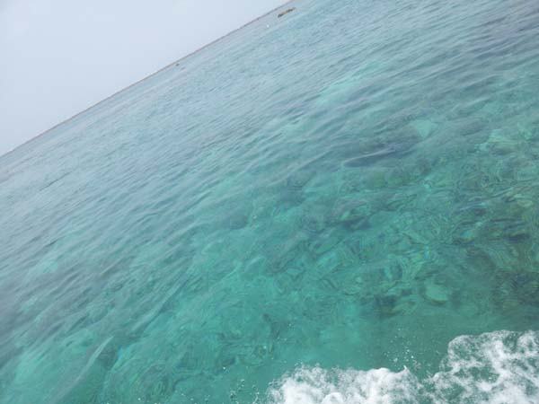 穏やかな水面!シュノーケル日和です