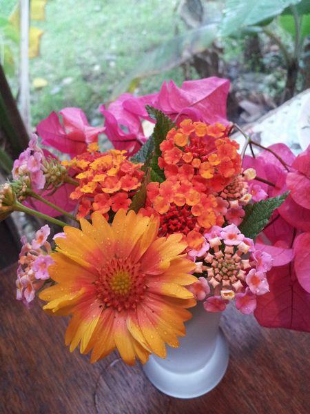 コンセプトはプライスレス。野草で生け花です。