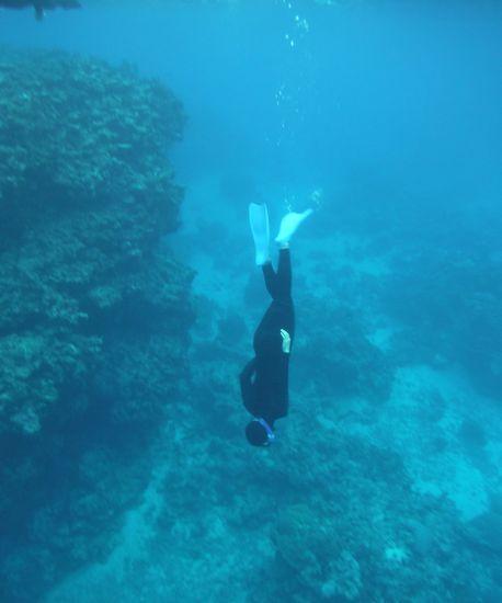 水深5mラインまで潜っています。