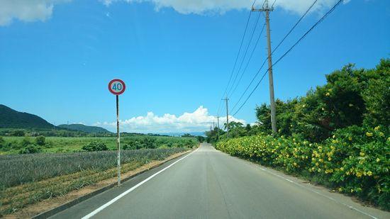 40kmの道が多いです