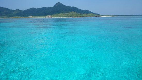 今日もキレイな海の色です