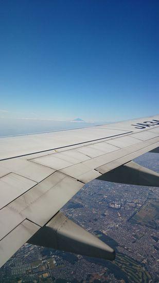 遠くに富士さんが見えます