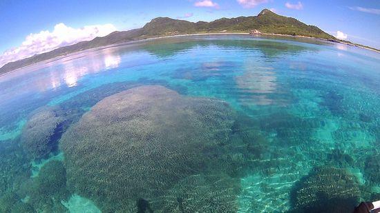 透明度が良い時の水面からの見え方