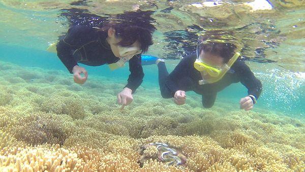 水中世界を満喫シュノーケリング