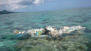 海洋ごみ。海の環境について考えてみました!