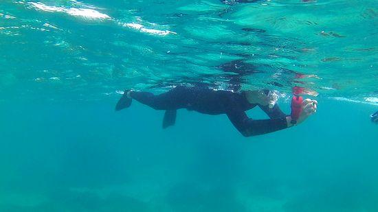 お父さんは、レンタルカメラで水中撮影