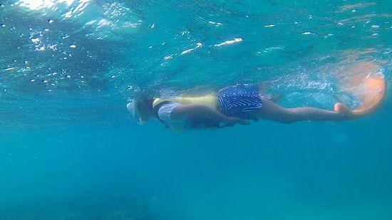 ユナちゃん、すいすい泳ぎ回っています。