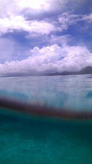 半水面の写真が撮れちゃいます