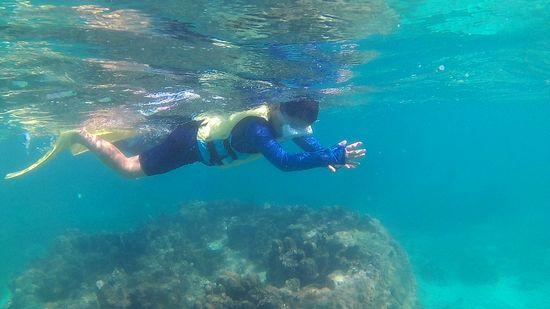 パワフルに余裕のある泳ぎです
