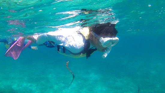 ユウセイ君、ハードに泳ぎ回っています。