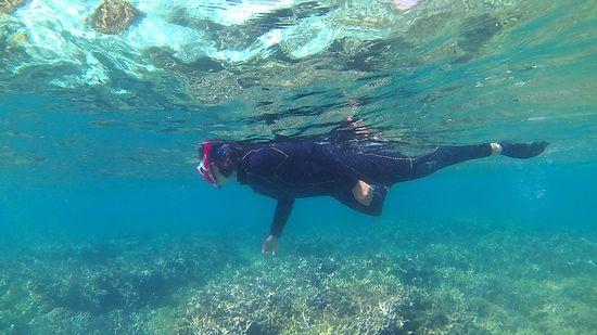 お母さんん、水中世界を満喫中
