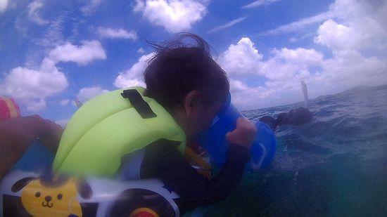 ルイ君、海を楽しんでいます。