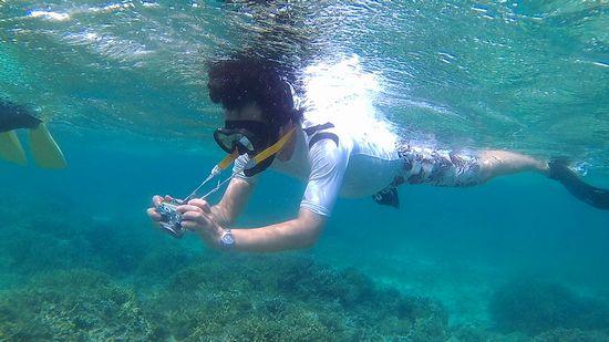 水中カメラを楽しんで