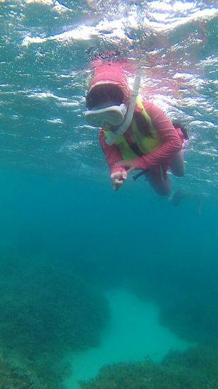 とってもタフな泳ぎのユナちゃんです