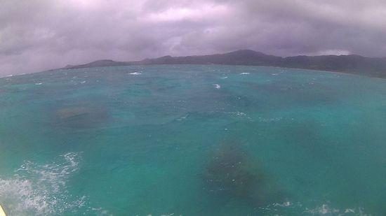 雨が降ったりの石垣島です。