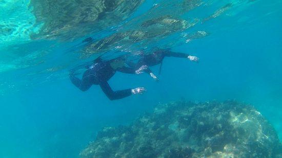 H井さん、終始余裕の泳ぎです