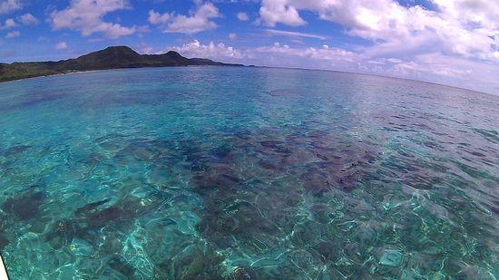 今日も穏やかな海が健在です。
