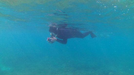 K林さんも水中撮影楽しんでいらっしゃいます。