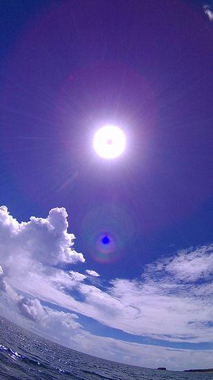 太陽さん、やっと顔を出しました。