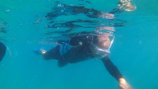 お父さん、クロールで泳いでいます