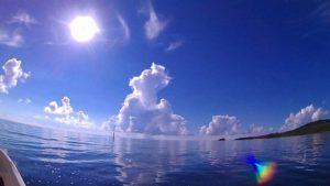 さんご礁の海からのツアー丸わかり!まとめブログ