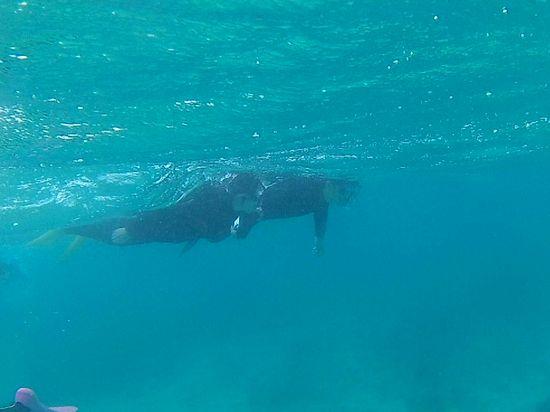 Y岸さんも慣れてくれば泳ぎまわっています。