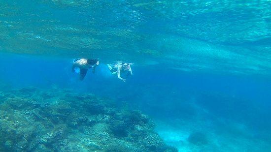 さぁ流れはありますがたくましい泳ぎのAさんとO形さんです。